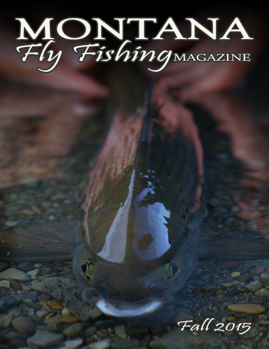Cover photo: Arctic Grayling by Ian Privette